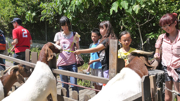 氣候日漸涼爽,適合前往壽山動物園進行親子休閒生態之旅。(圖∕高雄市壽山動物園 提供)