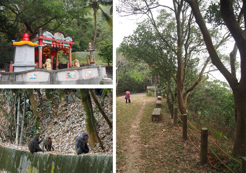 靈山步道路徑開闊,適宜全家大小健行,還可能遇上台灣獼猴。(圖∕張筧 攝)