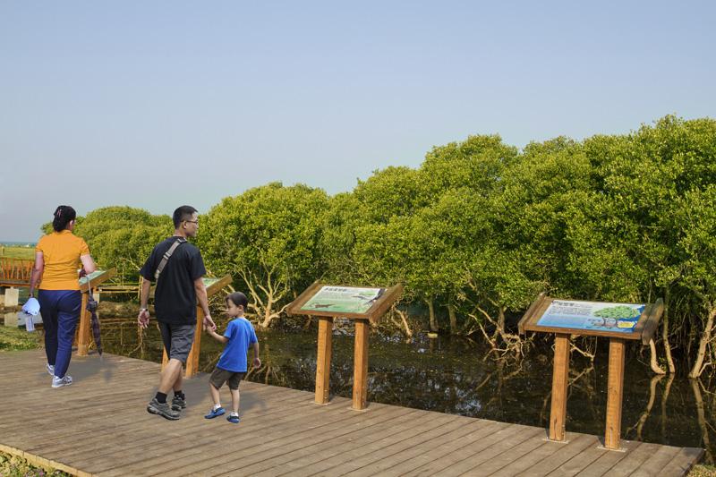紅樹林旁陳列濕地生態動植物的立牌介紹,具備教育功能。(圖∕高雄市政府工務局養護工程處 提供)