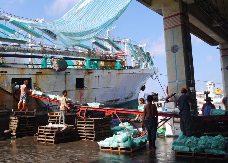 前鎮漁港是東南亞最大遠洋基地,早晨常可見到遠洋漁船返航卸下魚貨。(圖∕李昀諭 攝)