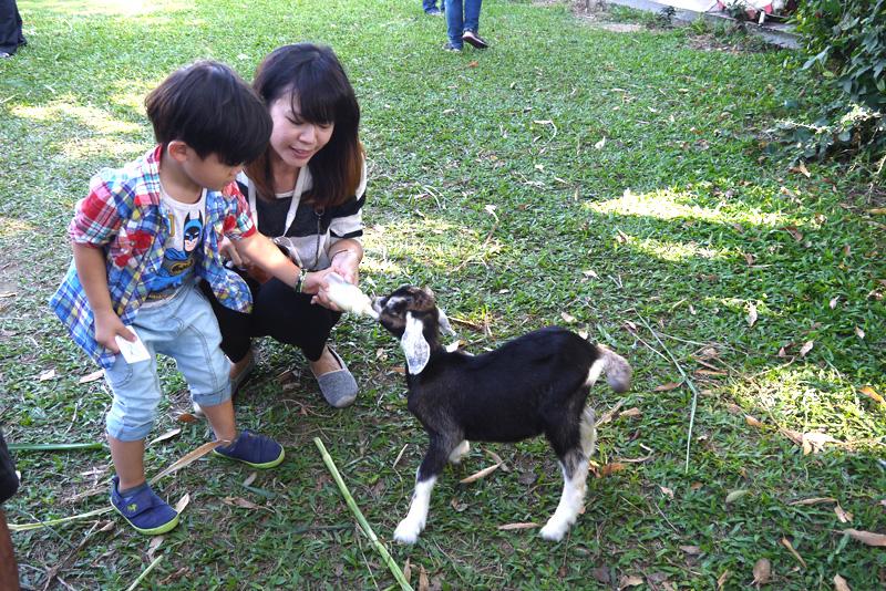 禾光牧場可讓親子體驗瓶餵小羊的樂趣。(圖∕李昀諭 攝)