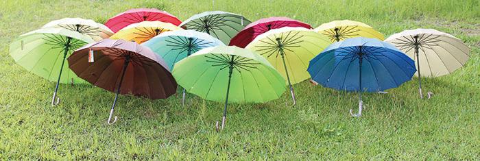 馬卡龍色系的繽紛小傘 Colorful umbrellas