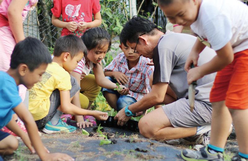 龍肚國小農作體驗 Longdu Elementary School students learning about plants