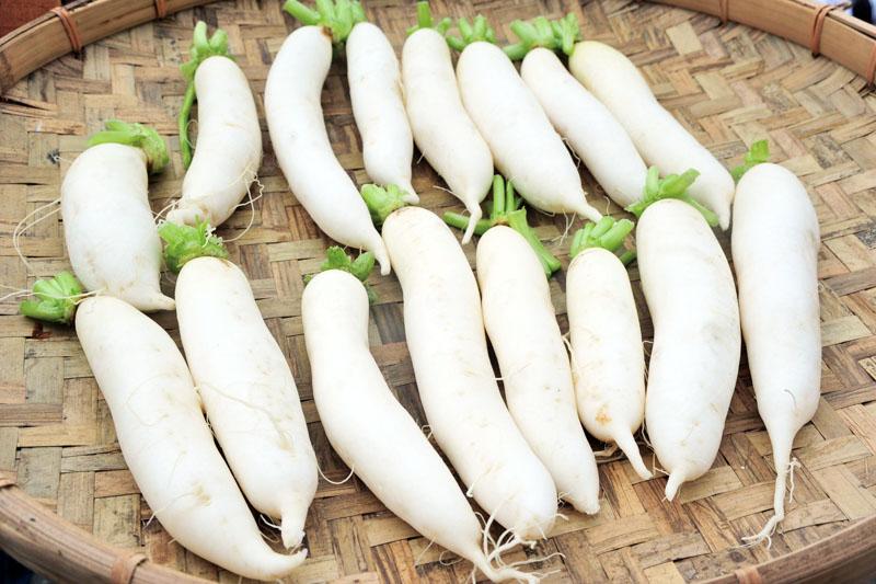白玉蘿蔔 White Jade Raddish