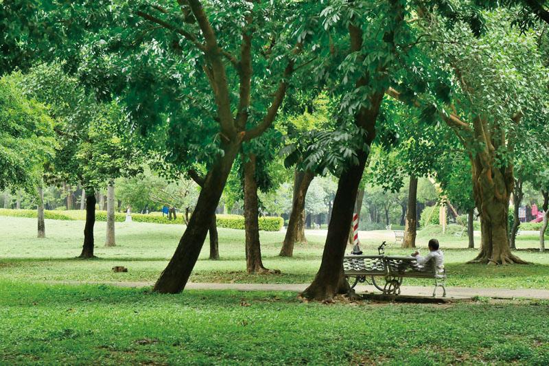 綠意盎然的衛武營都會公園 Lush green Wei Wu Ying Metropolitan Park